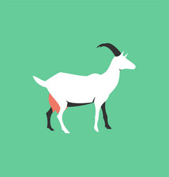 isolated flat goat farm animal cartoon character vector image