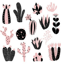 Pink cacti vector