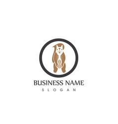 Squirrel animal silhouette logo design template vector