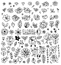 vintage collection hand drawn flowers vector image