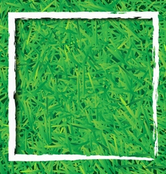 Green grass background with white rectangle design vector image vector image