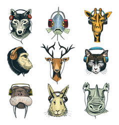 Animal head in headphones animalistic vector