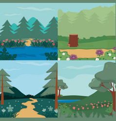 beautiful forests landscape vector image