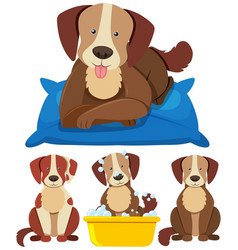 Cute dogs in different actions vector