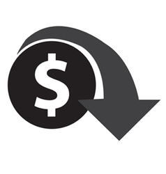 Dollar Decrease Icon vector image