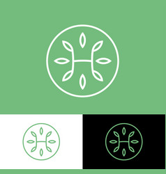 h monogram with leaves pharmacy medicine herbs vector image