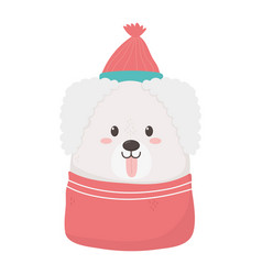 cute dog with hat and tongue out merry christmas vector image