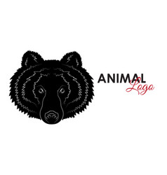 head grizzly bear icon logo symbol vector image