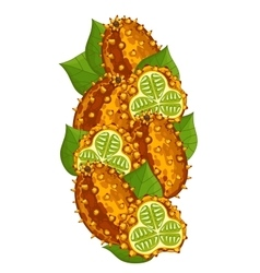 Horned Melon isolated composition vector image