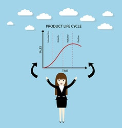 Product life cycle chart vector