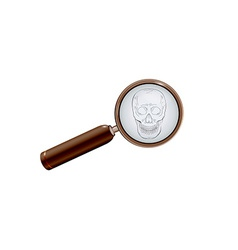 Skull and magnifying glass vector