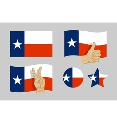 Texas flag icons set vector