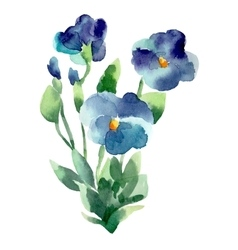 Watercolor of violet flower isolated vector image