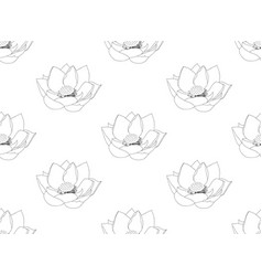 indian lotus seamless on white background vector image