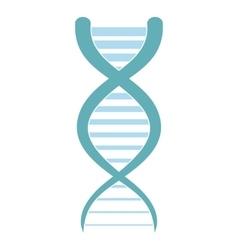 DNA and molecule icon vector image vector image