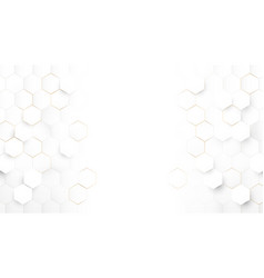 Abstract white hexagonal luxury background vector