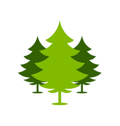 Christmas green forest spruce trees simple symbol vector