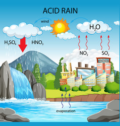 Diagram showing acid rain pathway vector