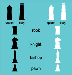 Hierarchy game chess vector image