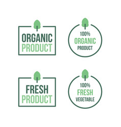 Organic product vegetable fresh vector