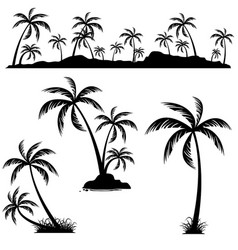 set of palm trees coconut palm trees isolated on vector image