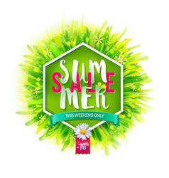 Summer sale on green backdrop vector