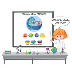 Young scientist explaining anatomy vector
