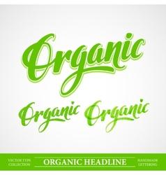 Title Organic Handmade lettering vector image