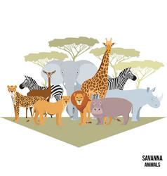 African animals savanna elephant rhino vector