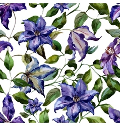 Clematis flower pattern vector