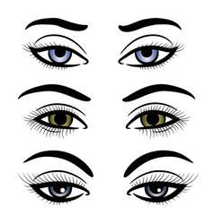 Colorful female eyes and brows vector