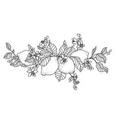 Lemon tree in tattoo style image light little vector