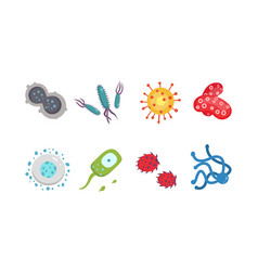 Set colorful viruses bacteria vector