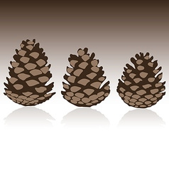 Set of pinecones in vector