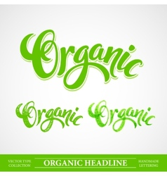 Title Organic Handmade lettering vector image
