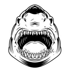 Vintage monochrome angry scary shark head vector