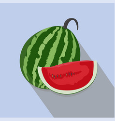 watermelons and slices isolated vector image vector image