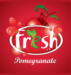 Fresh pomegranate juice with fruit vector