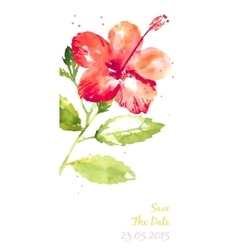 Background with red watercolor hibiscus vector