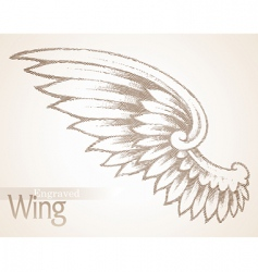 Engraved ornate wing vector