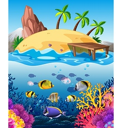 Fish swimming underwater and island vector image