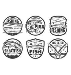 fisherman hobsport fishery tackles and fish vector image