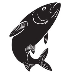 Herring fish vector