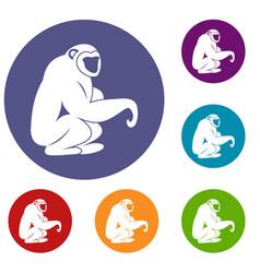 monkey sitting icons set vector image