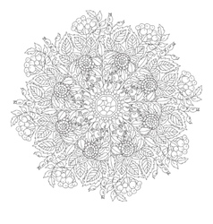 Outline Mandala for coloring book with elements vector image