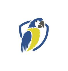 parrot bird logo vector image