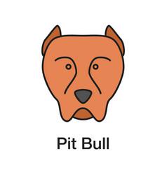 Pit bull color icon vector