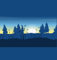 silhouette of spruce on hill landscape at morning vector image