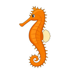 tigertail seahorse fish on a white background vector image
