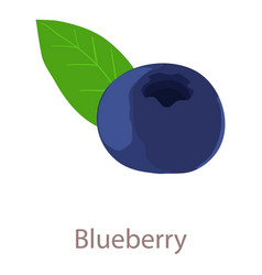 blue berry icon isometric 3d style vector image vector image